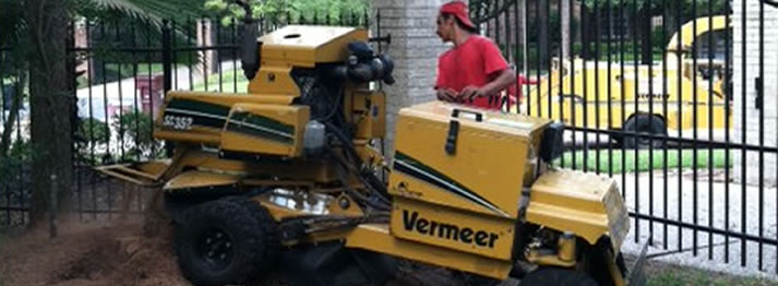 Stump Grinding | Tree Service | Spring The Woodlands Texas
